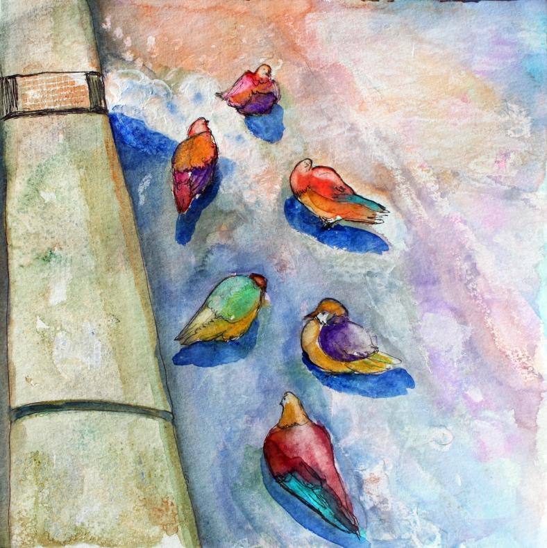 pigeons-in-paris