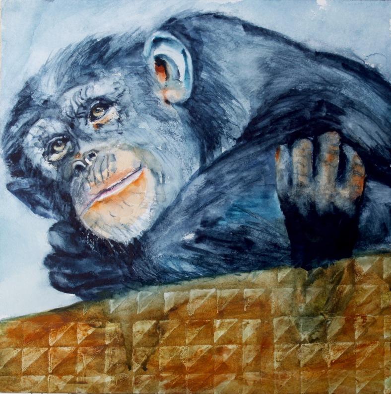 Chimp watercolour